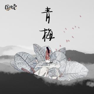 青梅—国风堂 仙羽
