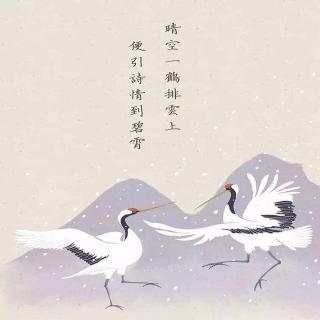 晴空一鹤排云上,便引诗情到碧霄。