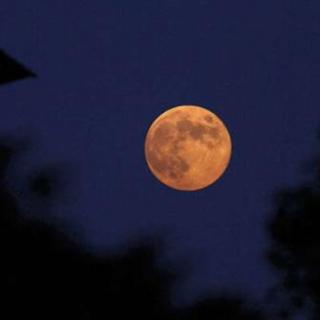 周作人:中秋的月亮