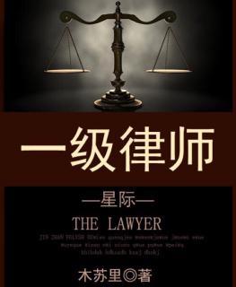《一级律师》埃维思1