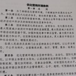 《优化营商环境条例》第四章政务服务
