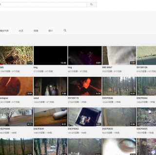 绝密档案 有人在油管发现了一些奇怪的视频 下