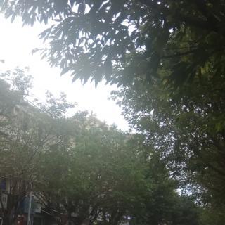 """【慢速新闻】台风""""沙德尔""""近况"""