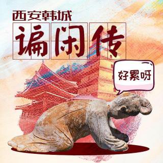 Vol104.三观看展—西安韩城谝闲传.1983毁三观