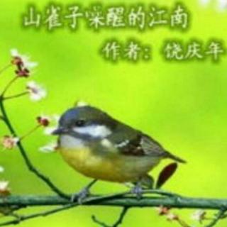 《山雀子噪醒的江南》 饶庆年