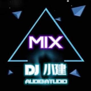 2020斗音流行中文ProgHouse - dj小建Remix