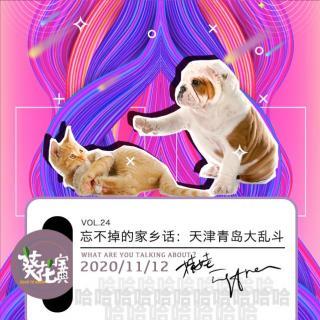 Vol.24忘不掉的家乡话:天津青岛大乱斗