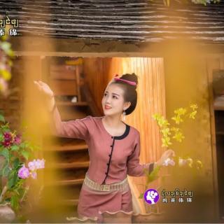 傣语杯中影玉应班
