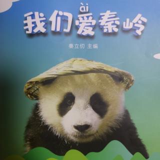 苑苑老师讲❤️我们爱秦岭系列18——地质地貌博物馆-翠华山