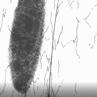 【趣味杂谈】_伊藤润二之不可名状的。。。。