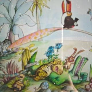 幼儿故事《大嘴鸟大嘴》