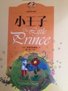 《小王子》第六章 一天看四十三次日落