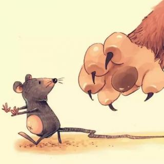 寓言故事《老鼠开会🐭》
