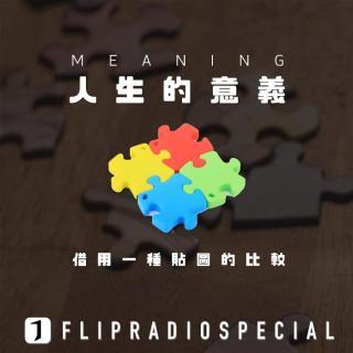 翻电Special 获得人生意义:一个拼图游戏的比喻 VOL.39