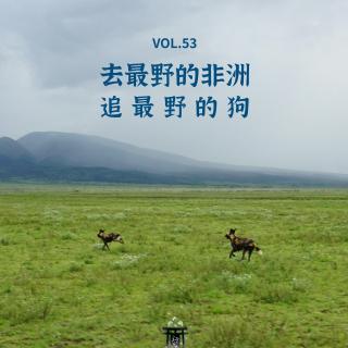 vol.53 去最野的非洲 追最野的狗!