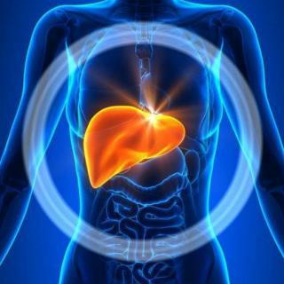 早安播报这几类人群要特别重视胃肠道问题