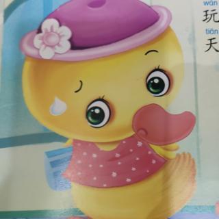 晚安故事442《小鸭子上学》