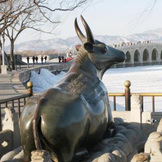 北京城北的镇物-金牛