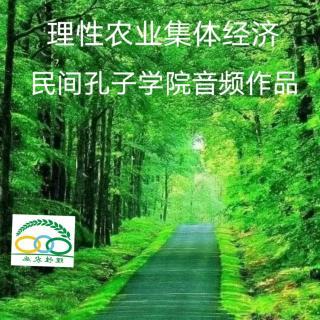 理性农业集体经济共产共享模式简介