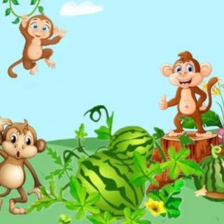 猴王吃西瓜