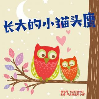 儿童睡前故事《长大的小猫头鹰》