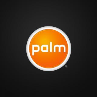 №127: Palm 的故事·终章