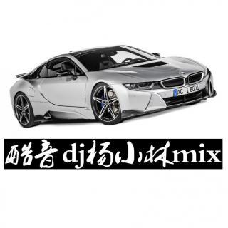 酷音Dj杨小林mix-独家私货国粤语包房EIectre音乐串烧舞曲