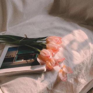 【晚安】碎碎念