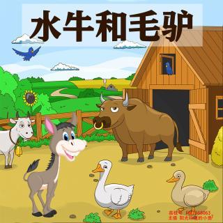 儿童睡前故事《水牛和毛驴》