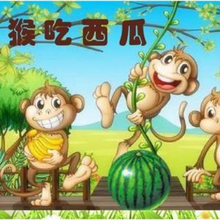 经典咏流传——府幼故事汇第80期《猴吃西瓜》