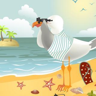 喝海水的小海鸥