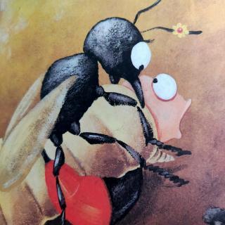 【砂泥蜂的外科手术】~法布尔昆虫记