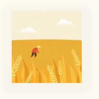 09芒种︱二十四节气