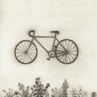 Bicycle by RM