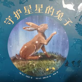绘本《守护星星的兔子》