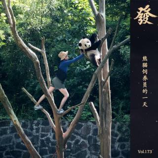 173期 - 熊猫饲养员的一天(四川话版)