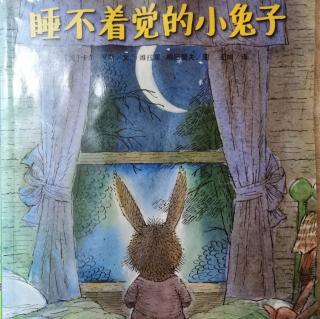 绘本《睡不着觉的小兔子》