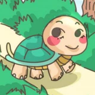 搜集智慧的乌龟