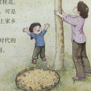 五年级上册语文课文3-桂花雨(琦君)