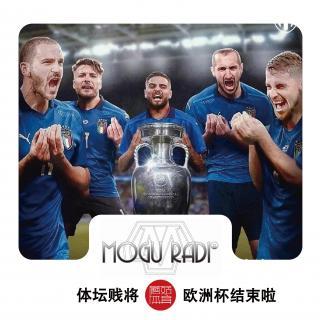 蘑菇体坛贱将vol85:欧洲杯结束啦