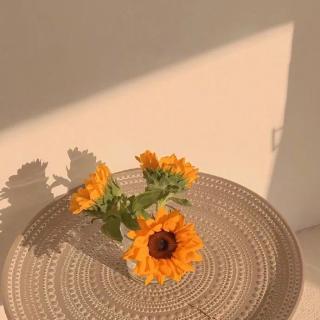 做永远的的向日葵花束