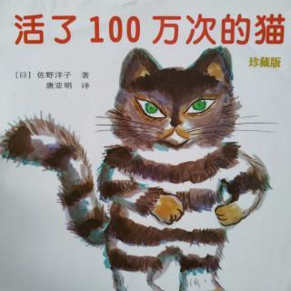 活了100万次的猫0828