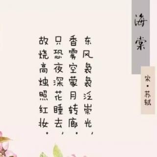 48 海棠(北宋•苏轼)