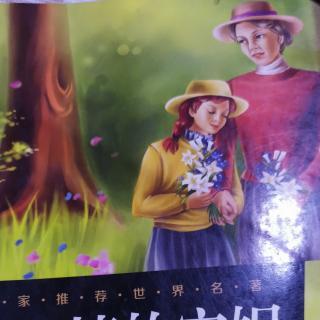 《绿山墙的安妮》1.林德夫人的疑惑