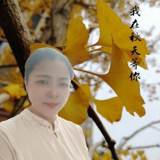 《我在秋天等你》作者/粗衣布食  声音/隐一
