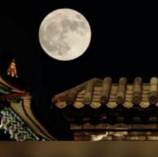 《月是故乡明》作者 季羡林         朗读    茉莉