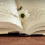 把生活过成一首诗