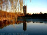 蓝天白云51001