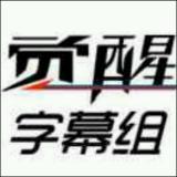 觉醒字幕组