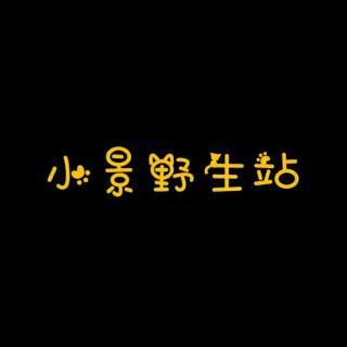 小景野生站 - 【单截】一个人的北京.景向谁依